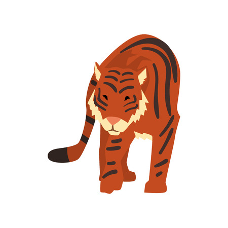 Powerful tiger, wild cat, predator cartoon vector Illustration isolated on a white background. Illustration