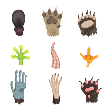 Set of paws of wild forest animals, pets and sea creatures: dog, bear, cat, frog, monkey, chicken leg, horse hoof and tentacle of octopus. Colorful flat vector design isolated on white background. Illustration