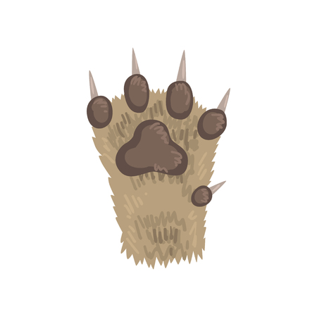 Paw of a cat animal vector Illustration on a white background
