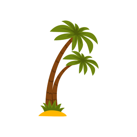 Tropical palm trees vector Illustration isolated on a white background.