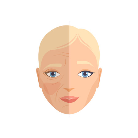 Face of woman before and after cosmetic procedure, face rejuvenation, cosmetology and anti aging concept vector Illustration