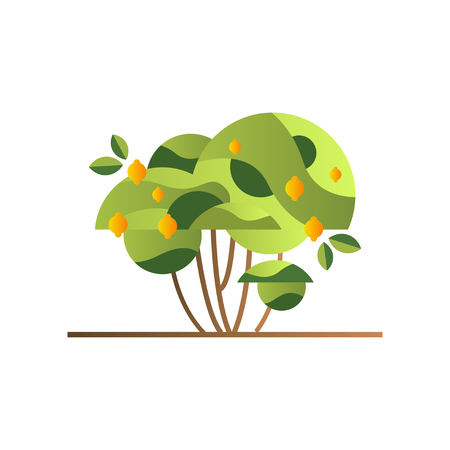 Green tree with lemons, garden shrub with ripe fruits vector Illustration isolated on a white background.