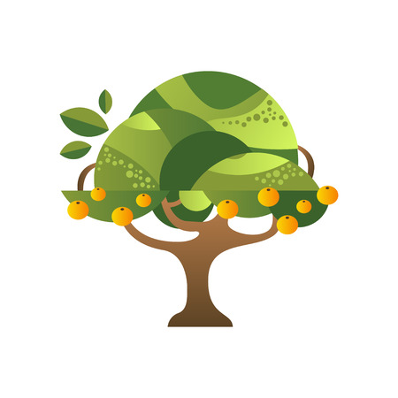 Green tree with oranges, garden plant with ripe fruits vector Illustration isolated on a white background. 向量圖像
