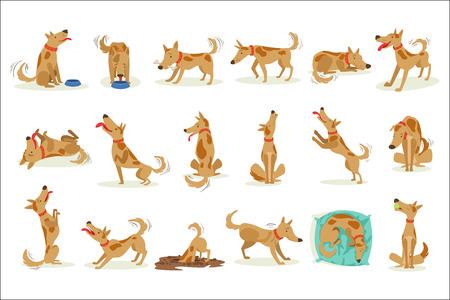 Brauner Hund mit normalen Alltagsaktivitäten. Set von klassischen Haustier-Hunde-Verhaltens-Illustrationen im niedlichen Karton-Stil, isoliert auf weißem Hintergrund.