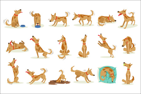 Brown Dog Set Of Normal Everyday Activities. Set Of Classic Pet Dog Behavior Illustrations In Cute Carton Style Isolated On White Background. 写真素材 - 111889844