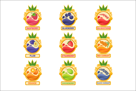 Jam Label Sticker Collection Of Templates In Round Frames. Colorful Berry And Fruit Jar Vector Labels For Homemade Marmalade. Vettoriali