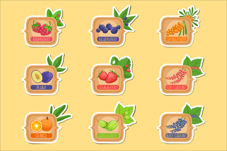 Jam Label Sticker Collection Of Templates In Square Frames.Colorful Berry And Fruit Jar Vector Labels For Homemade Marmalade.