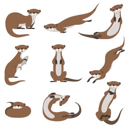 귀여운 수달 세트, 다양 한 포즈의 재미있는 동물 캐릭터 벡터 일러스트 레이 션 흰색 배경에 고립.
