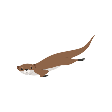 Cute otter swimming, funny animal character vector Illustration isolated on a white background.
