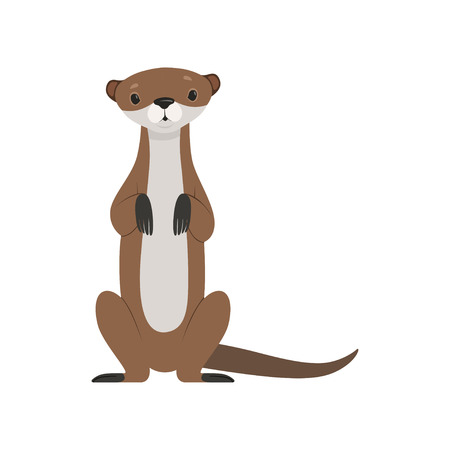 Cute otter sitting, funny animal character front view vector Illustration isolated on a white background.
