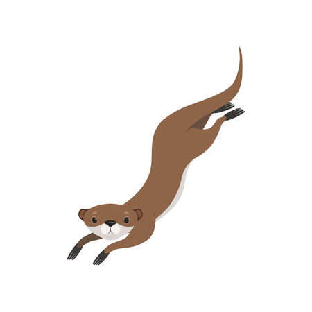Lovely brown otter swimming, funny animal character vector Illustration isolated on a white background.