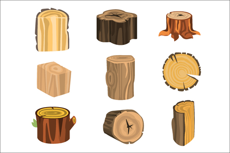 Set of different stump trees. Wooden materials vector Illustrations isolated on white background