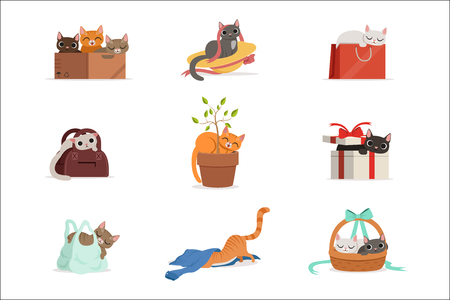 Cute differents cats having rest in their favorite places set of vector Illustrations isolated on white background