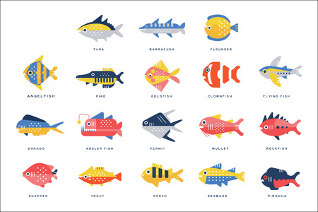 Collection of sea and river fish and lettering name in English vector Illustrations on a white background