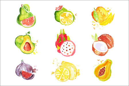 Set of colorful watercolor fruits vector Illustrations on a white background