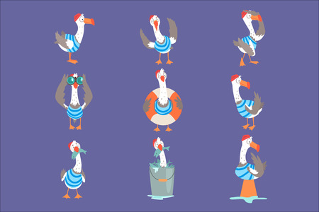 Funny cartoon seagull showing different actions and emotions set, cute comic bird characters vector Illustrations