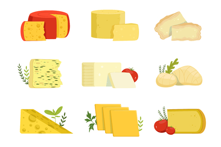 Different types of cheese pieces, popular kind of cheese vector Illustrations on a white background