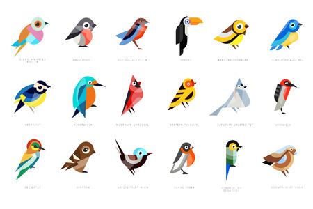 Colección de pájaros, rodillo de pecho lila, camachuelo, pitta de vientre rojo, carbonero común, martín pescador, cardenal norteño, devorador de abejas, gorrión, magnífico vector de hadas ilustraciones sobre un fondo blanco