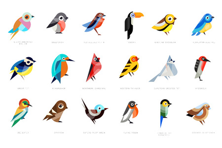 Collection of birds, lilac breasted roller, bullfinch, red bellied pitta, great tit, kingfisher, northern cardinal, bee eater, sparrow, superb fairy vector Illustrations on a white background Ilustração