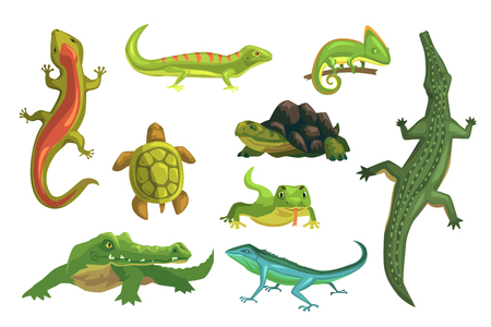 Reptiles and amphibians set of vector Illustrations isolated on a white background Иллюстрация