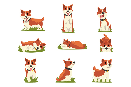 Set of cartoon red-haired corgi dogs Illustration