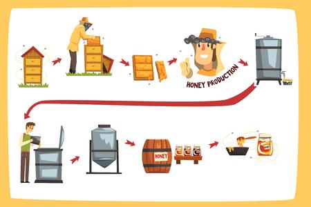 Étapes du processus de production de miel, apiculteurs récoltant le miel et préservant dans un vecteur de dessin animé de pot Illustrations isolées sur fond blanc Vecteurs
