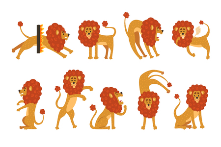 Set of funny African lion in different actions. Cartoon wild animal character. Zoo theme. Design for children s book, t-shirt print or sticker. Flat vector illustration isolated on white background.