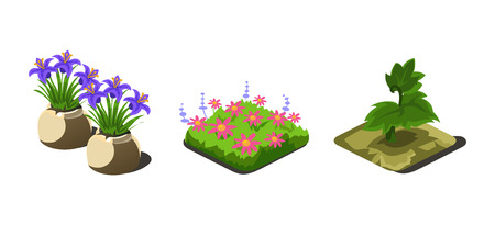 Garden plants and flowers, game user interface nature elements for video computer games vector Illustration, web design Illustration