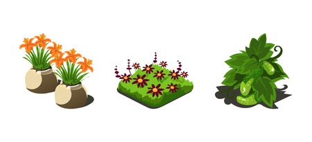 Garden plants, flowers and vegetables, game user interface nature elements for video computer games vector Illustration, web design