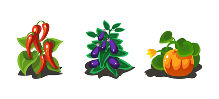 Garden plants, pepper, eggplant and pumpkin, game user interface nature elements for video computer games vector Illustration, web design