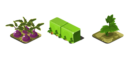 Garden plants and green fence, game user interface nature elements for video computer games vector Illustration, web design