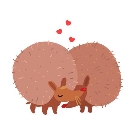 Coppia di ricci carini innamorati che si abbracciano, due aniimals felici che abbracciano vettoriale illustrazione isolato su sfondo bianco.