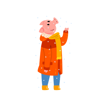 Cute pig character dressed in warm bright clothes enjoying the falling snow, Chinese symbol of New Year, design element for Christmas card, calendar, invitation vector Illustration isolated on a white background.