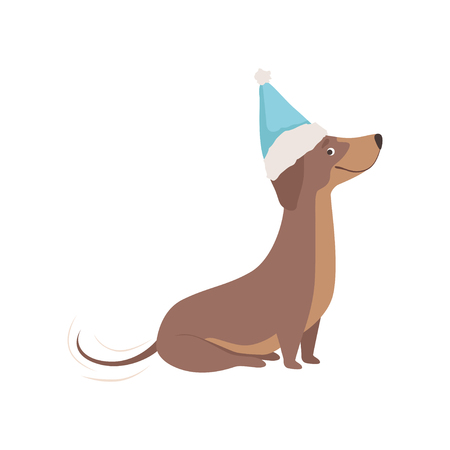 Purebred brown dachshund dog in a blue Santa hat vector Illustration on a white background Illustration