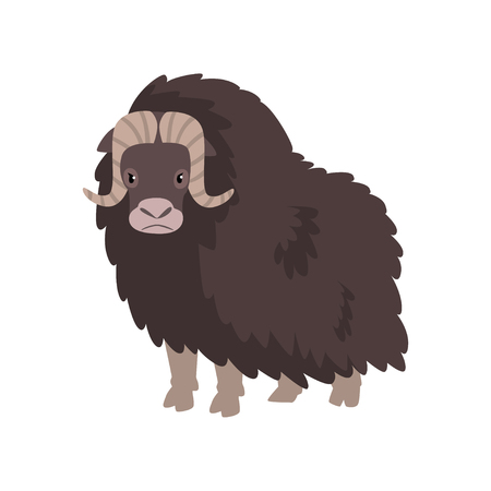 Bison, arctic polar animal vector Illustration isolated on a white background.