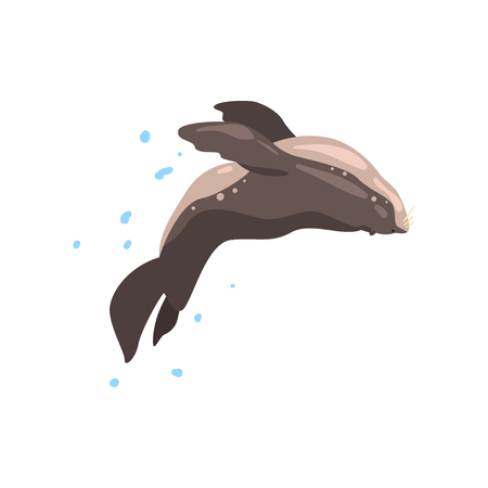 Fur seal performing in public in dolphinarium or circus vector Illustration on a white background Illustration