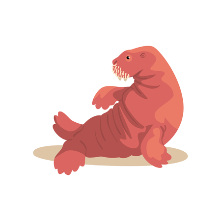 Sea lion performing in public in dolphinarium vector Illustration on a white background Illustration