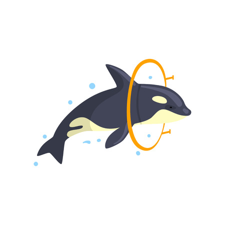 Orca jumping through a ring, sea animal performing in public in dolphinarium vector Illustration on a white background