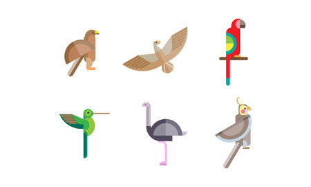 Birds set, eagle, falcon, hummingbird, ostrich, parrot, quezal bird, colorful polygonal low poly geometric design vvector Illustrations on a white background