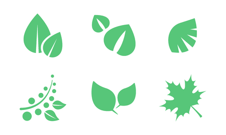 Green leaves set, parts of plants end trees of various shapes vector Illustration isolated on a white background. Archivio Fotografico - 128162604