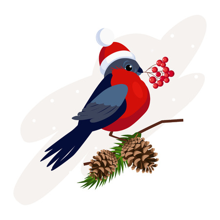Bullfinch wearing a Hat holding berries on Branch with Cones. Vector Illustration