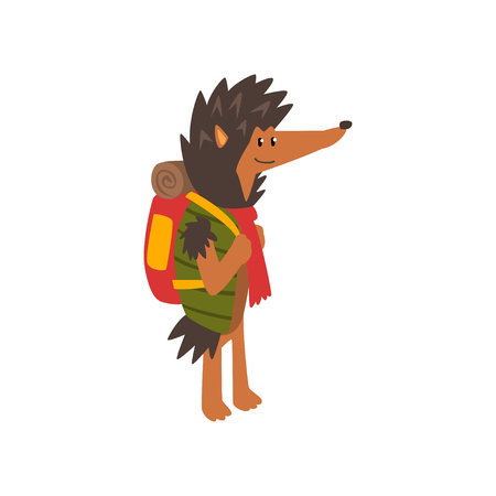 Hedgehog travelling with backpack, cute cartoon animal having hiking adventure travel or camping trip vector Illustration isolated on a white background.
