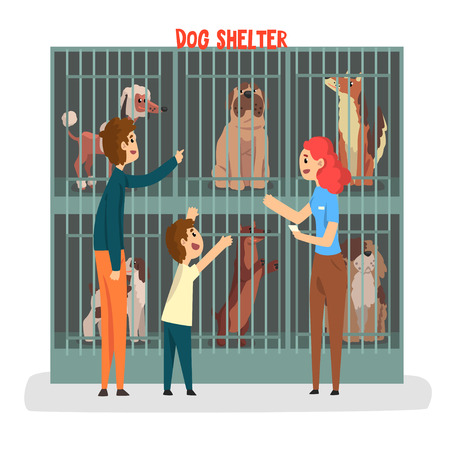 Cat ahelter, family adopting cat pet from animal shelter vector Illustration isolated on a white background.