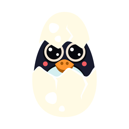 Penguin Baby in an Egg. Vector Illustration