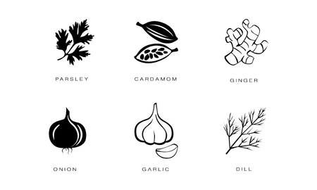 Spices and condiments icons set, parsley, cardamom, ginger, onion, garlic, dill vector Illustration black badges on a white background Ilustração