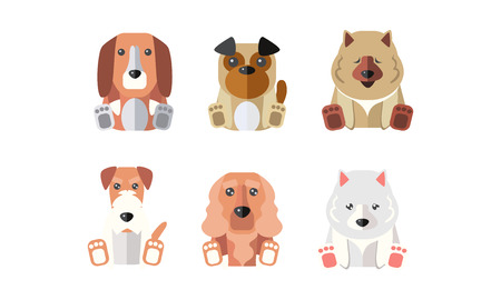 Collection of dogs of different breeds, cartoon animals pets vector Illustration on a white background Ilustrace