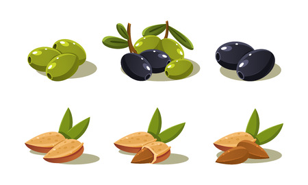 Fresh olives and almond nut, vegetarian healthy organic product set vector Illustration on a white background