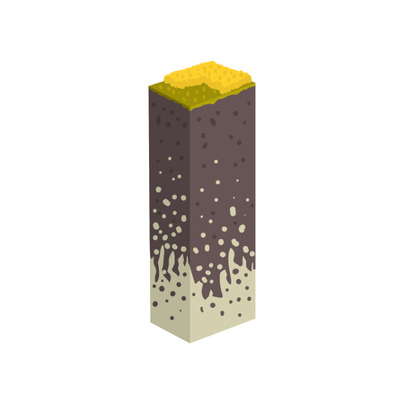 Geological section, stratigraphic column with cut of soil with a grass, roots, layers of the ground vector Illustration on a white background