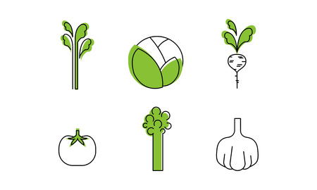 Fresh vegetables line icons set, cabbage, greenery, radish, tomato, garlic, broccoli, asparagus, organic healthy food vector Illustration isolated on a white background.