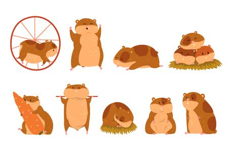 Niedliche Cartoon-Hamster-Charaktere, lustiges Tier in verschiedenen Situationen Vektor-Illustrationen auf weißem Hintergrund